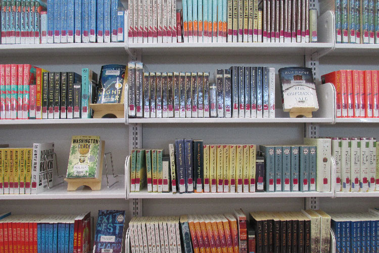 photo of shelves with library book club collection