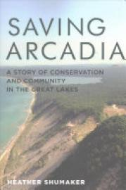 Cover image for Saving Arcadia
