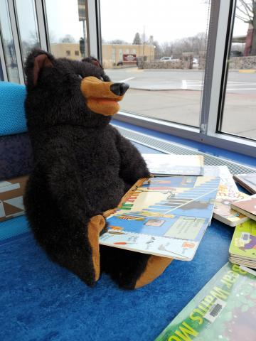 Dewey Bear Reads Books and Looks Out the Window at Ames Public Library